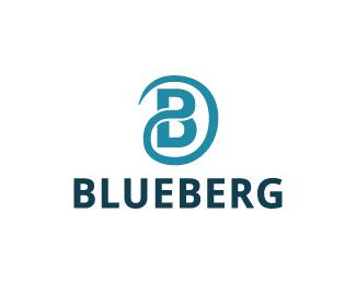 17-blueberg